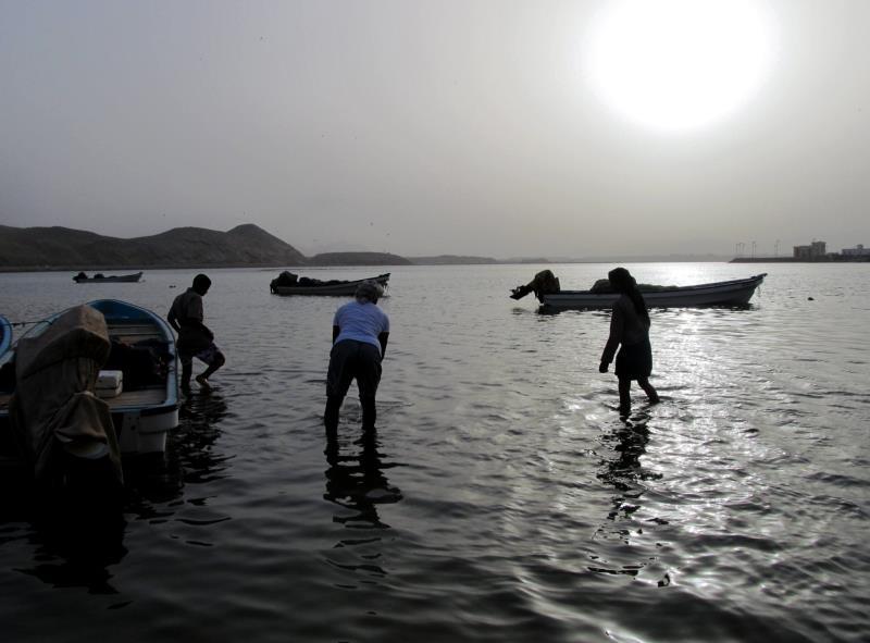 27 sur vissers